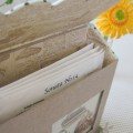 carton_napkin_bag_06